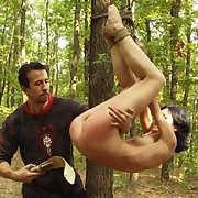 Does a Dominant discipline in the woods?