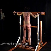 Babe was tied and bullwhipped brutally