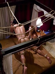 The red mistress fucked the asshole of a tied boy