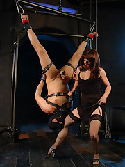 Mistress suspends her masked slave upside down, punishes his ass and cock and submerges his head