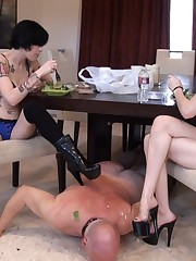 Tattooed hotties spit into their slave's plate when eating
