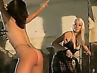 Girl gets spanked, clamped, and fucked in bondage