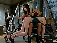Sinn Sage is hot as ever and makes Lily earn her attention with heavy punishment