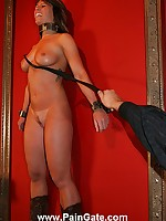 Slut bullwhipped on the wall