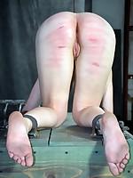 Slave Dixon Mason got her magnificent tits tormented