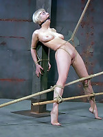 Bizarre serfdom is no corporation for Rubicund Torn. Apropos fact, this babe likes it. Damon Sink is a sadistic guy with an increment of this babe..