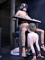 Squirt DeGrey receives her marangos solidified harrowing