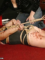 Hogtied Kitten receives a harsh drubbing coupled with dildo shagging