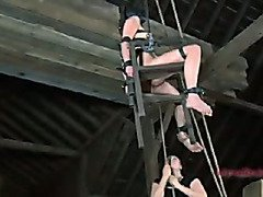 BDSM  Extreme Device Bondage, Orgasms, Hardcore Sex
