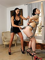 Lucia Love Acquires Flogged, Waxed, Added to Stacked By Mistress Isla