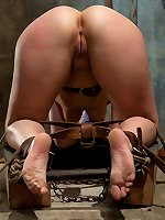 Submissive slut brat Holly Stevens tied and fucked on Training of O