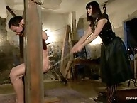 Male sub is wrestled down by beautiful domme
