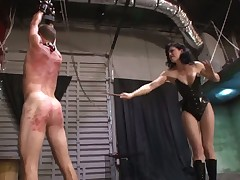 Posh Dominatrix with cool body disciplines her sub