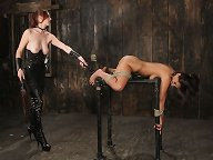 Hot Reena tied and strap-on fucked!