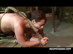 Tied Whipped And Toyed Bondage