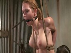 Compelled take prex peaches punished hither