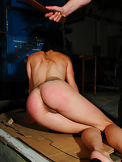 <!–-IMAGE_COUNT-–> of Bullwhipped ass with hard paddling