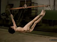 Extreme hanging suspension and whipping