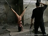 Great babe was tied and punished hard